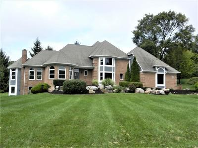Milford Single Family Home For Sale: 1001 Deep Valley Drive