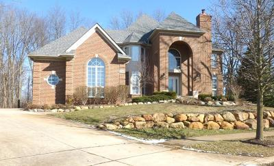 Novi Single Family Home For Sale: 47964 Andover Drive