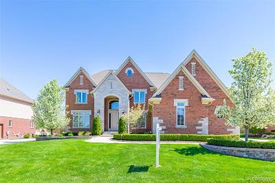 Rochester Hills Single Family Home For Sale: 1555 Traceky