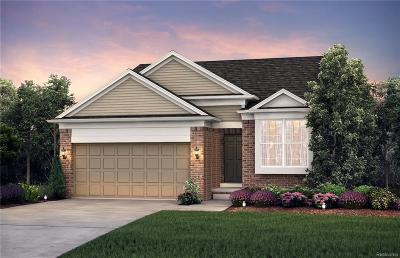Ann Arbor, Ann Arbor (c), Ann Arbor Twp, Ann Arbpr Single Family Home For Sale: 2994 Montana Way