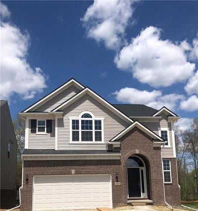 Ann Arbor Single Family Home For Sale: 2883 Dillon Drive