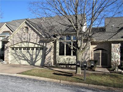 Plymouth Condo/Townhouse For Sale: 9406 Arbor Court