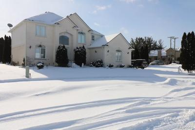 Macomb Twp Single Family Home For Sale: 19444 Jack Pine Drive