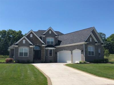 Green Oak Twp MI Single Family Home For Sale: $612,900
