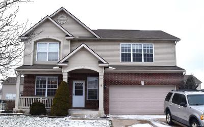 Brownstown Twp, Flat Rock Single Family Home For Sale: 31300 Adora Ln Lane