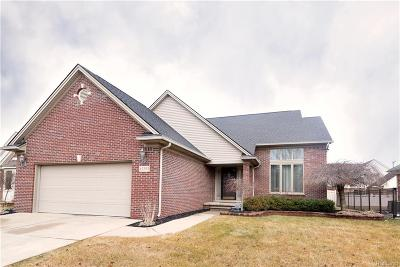 Southgate Single Family Home For Sale: 12253 Churchill Avenue