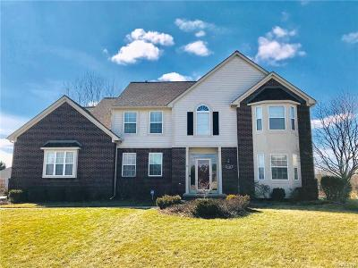 Rochester, Rochester Hills, Oakland Twp, Lake Orion Vlg, Clarkston, Orion Twp, Ortonville, Ortonville Vlg, Brandon Twp, Independence Twp Single Family Home For Sale: 4122 Norwich Court