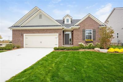 Bruce Twp Single Family Home For Sale: 71604 Julius Drive