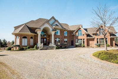 Oakland Twp MI Single Family Home For Sale: $749,000