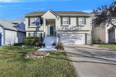 Auburn Hills Single Family Home For Sale: 873 Huntclub Boulevard