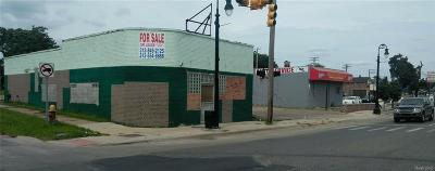 Detroit MI Commercial For Sale: $119,900
