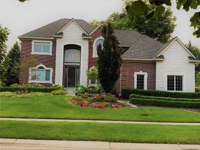 Northville Single Family Home For Sale: 18213 Parkshore Drive