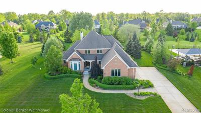 Novi Single Family Home For Sale: 22257 Hillside Drive