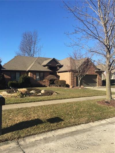 Macomb Twp Single Family Home For Sale: 50131 Madison Drive