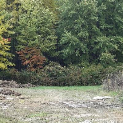Clinton Twp Residential Lots & Land For Sale: Bedford
