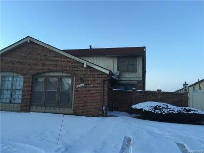Southfield Condo/Townhouse For Sale: 29026 Tiffany Drive E
