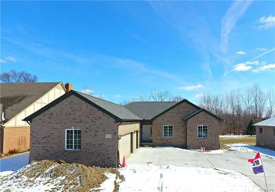 Chesterfield Twp Single Family Home For Sale: 51260 Sass Road