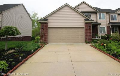 Milford Twp Condo/Townhouse For Sale: 3477 Silver Stone Drive