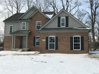 Belleville, Belleville-vanbure, Bellleville, Van Buren, Van Buren Twp, Van Buren Twp., Vanburen Single Family Home For Sale: 13670 Cobblestone Creek Drive