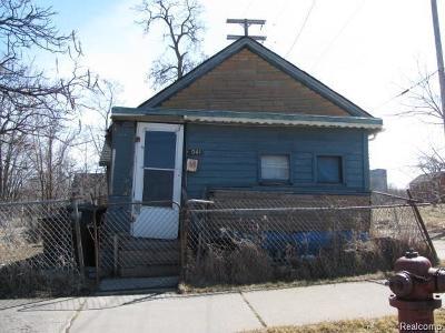 Detroit Single Family Home For Sale: 2041 Elm Street