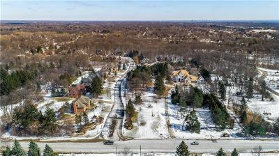 Residential Lots & Land For Sale: 28550 Halsted Lot A Road