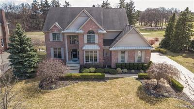 Northville Twp MI Single Family Home For Sale: $785,000