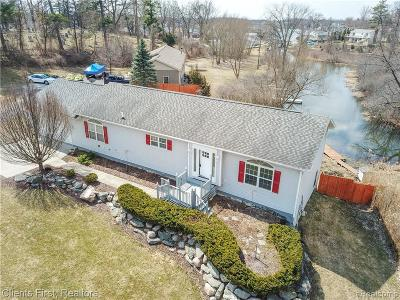 Lake Orion Single Family Home For Sale: 419 N Axford Street