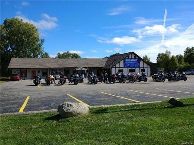 Clarkston, Independence Twp, Springfield Twp Commercial For Sale: 10816 Dixie Highway