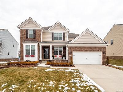 South Lyon Single Family Home For Sale: 58716 Winnowing Circle N