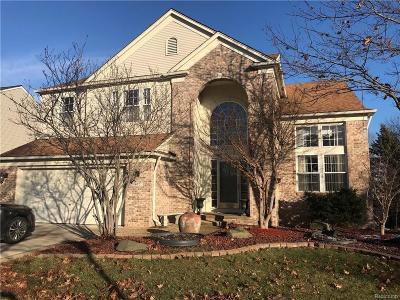 South Lyon MI Single Family Home For Sale: $337,900