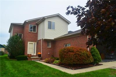 Chesterfield Twp Condo/Townhouse For Sale: 32897 Birchwood Drive
