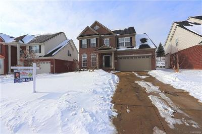 Northville Single Family Home For Sale: 16334 Mulberry Way