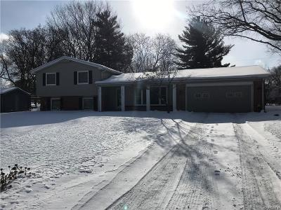 Farmington Hills Single Family Home For Sale: 29742 Old Bedford Street
