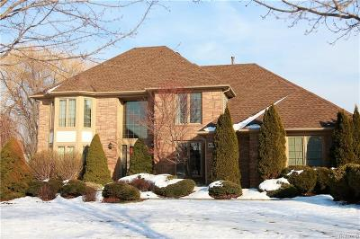 CANTON Single Family Home For Sale: 6598 Helmsford Court