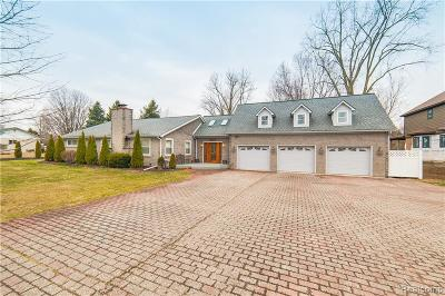 Shelby Twp Single Family Home For Sale: 12091 24 Mile Road