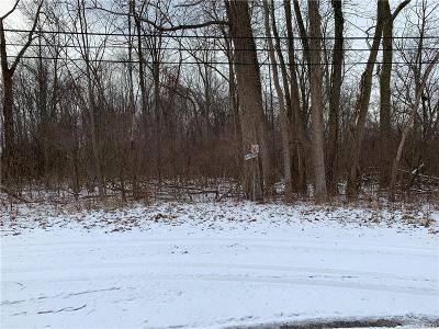 Huron Twp Residential Lots & Land For Sale: 0001 Huron River Drive