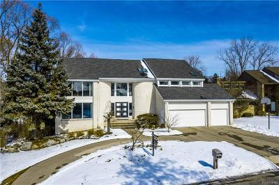 West Bloomfield Twp Single Family Home For Sale: 2998 Chambord Drive
