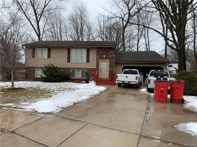 Chesterfield Twp Single Family Home For Sale: 48610 Kelly Lea Court