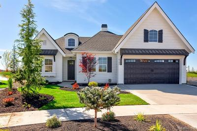 Novi Single Family Home For Sale: 43127 W Thirteen Mile Road