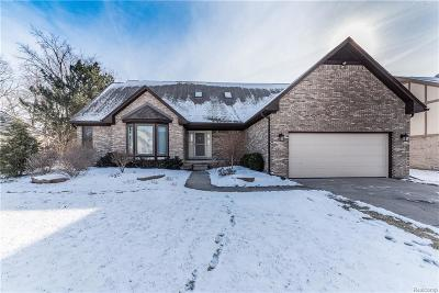Livonia Single Family Home For Sale: 19030 Van Road