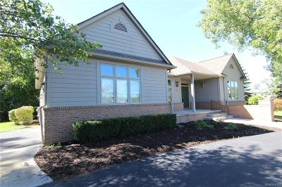 Rochester, Rochester Hills Single Family Home For Sale: 26 Rochdale Drive S