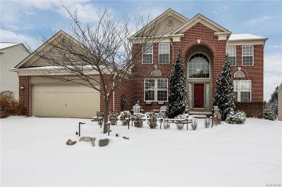 Holly Twp Single Family Home For Sale: 924 River Rock Drive