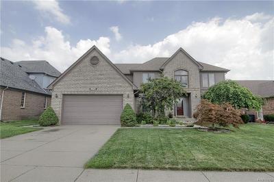 Macomb Twp Single Family Home For Sale: 47774 Lighthouse Drive