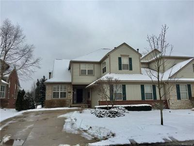 Rochester Hills Condo/Townhouse For Sale: 3817 Winding Brook