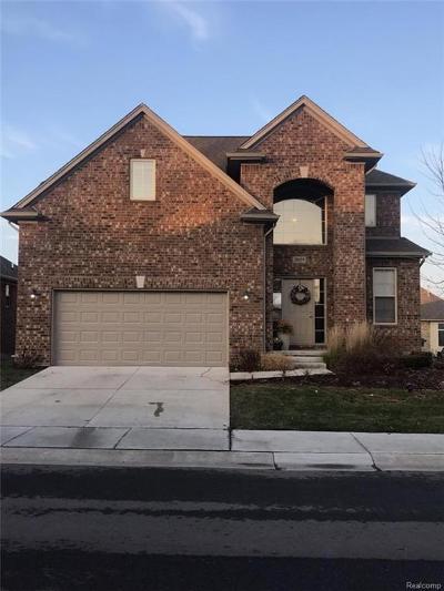 Warren Single Family Home For Sale: 30059 Trailwood Drive