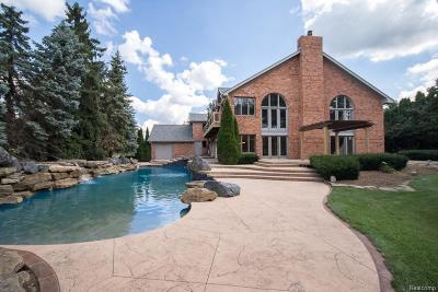 Lyon Twp MI Single Family Home For Sale: $850,000