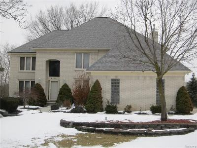 Farmington Hills Single Family Home For Sale: 37680 McKenzie Court Court