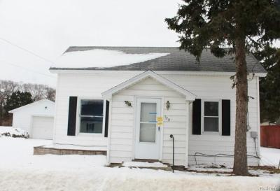 Manistee County Single Family Home For Sale: 129 Third Street