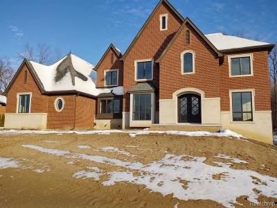 Novi Single Family Home For Sale: 49026 Veneto Drive