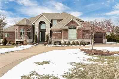 Bloomfield Twp Single Family Home For Sale: 2850 Berkshire Drive